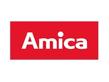 __amica-international-logo